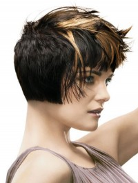 shaded black hair with light highlights