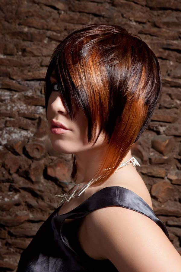 Two Colors Red And Brown Tinted Hair Hairstyles Hair Photo
