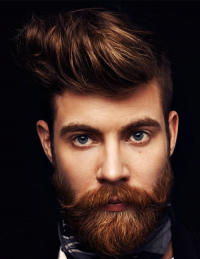 hairstyle for men, a guy with a beard