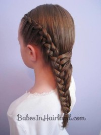 Long, brown hair with french braids