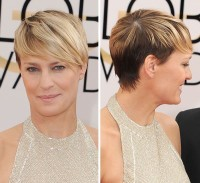 Classic, short pixie hairstyle in two tones