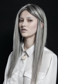 Long blonde hairstyle with grey highlights