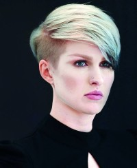 Short, blonde haircut with grey colour