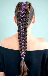 Long, brown braids with ribbon