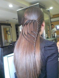 Long, straight, brown hair with small braids